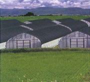 農業用遮光ネット