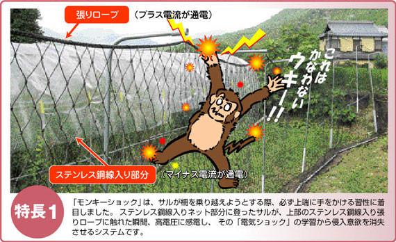 猿害防止電気柵 モンキーショック